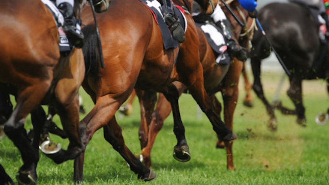 CAMERA Analysis and prevention of spinal injuries in horse racing